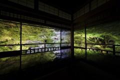 緑に染まる京都のパワースポットへ! 青もみじ御朱印めぐり&1日150名限定の夜間特別拝観