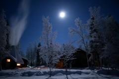 フィンランド・レヴィの絶景オーロラとエキサイティングな犬ぞりに大興奮!